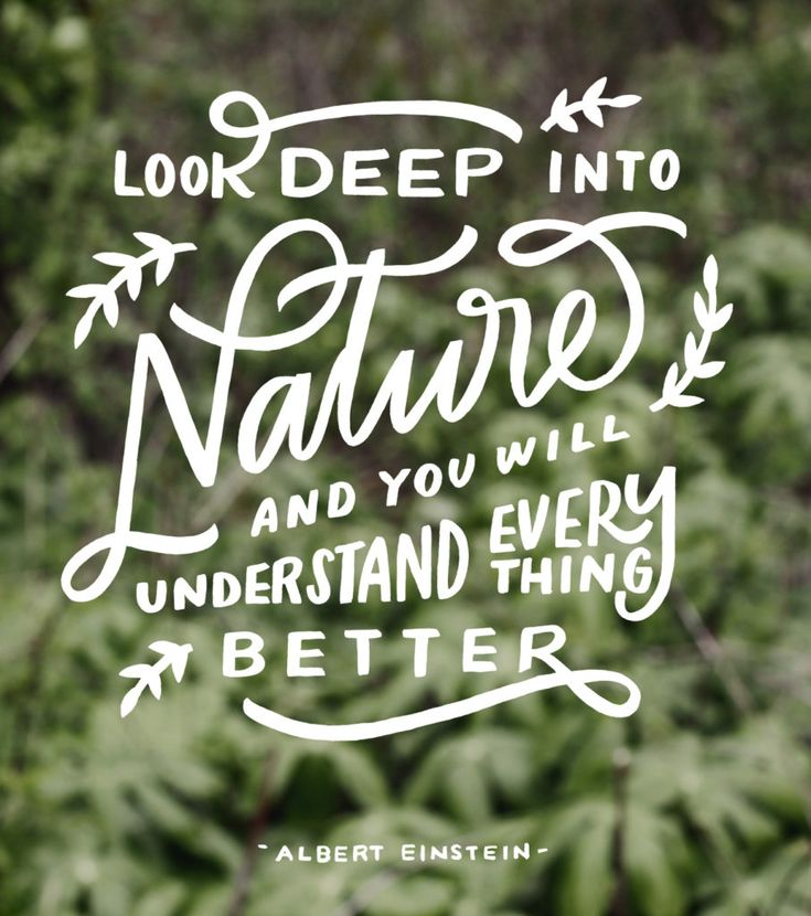 Best Nature Quotes: 25+ Best Nature Quotes On Pinterest