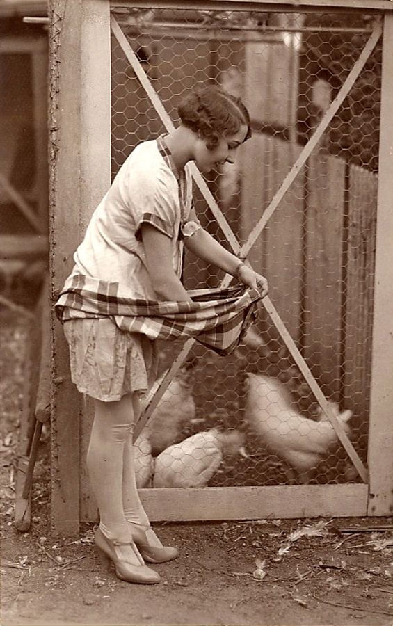 Gathering eggs - ca. 1920
