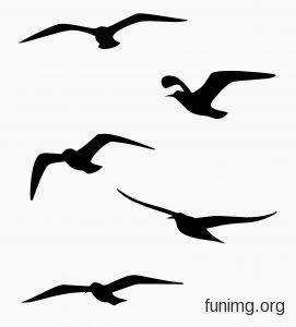 Животные и птицы 1-005   Животные и птицы трафареты для стен и наклейки для декора
