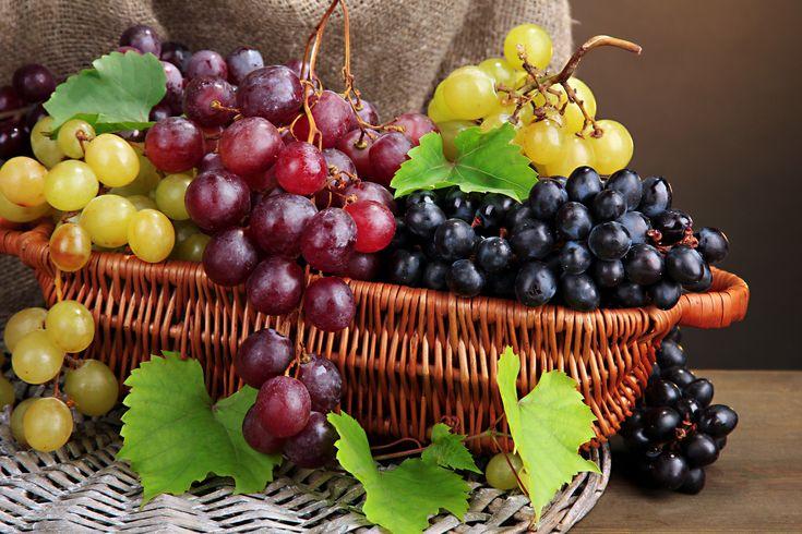 Quanto sono belli i #grappoli di #uva maturi e le distese coltivate a vite in questo periodo dell'anno? Da questo frutto si ricava il nettare di #Bacco, il #vino, ma anche un ottimo fine pasto dopo un pranzo o a una cena tra amici. Un chicco tira l'altro e intanto si chiacchiera del più e del meno, ma l'uva può essere anche molto di più, ossia un vero e proprio ingrediente tutto da riscoprire.