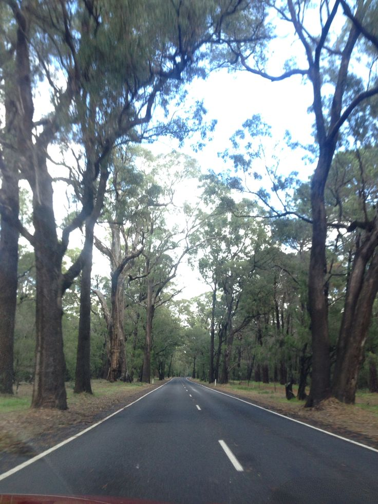 The Tuart Forrest Busselton Western Australia