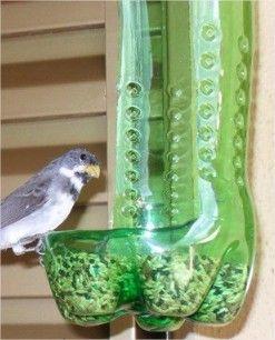 Boas ideias para reciclar garrafa pet