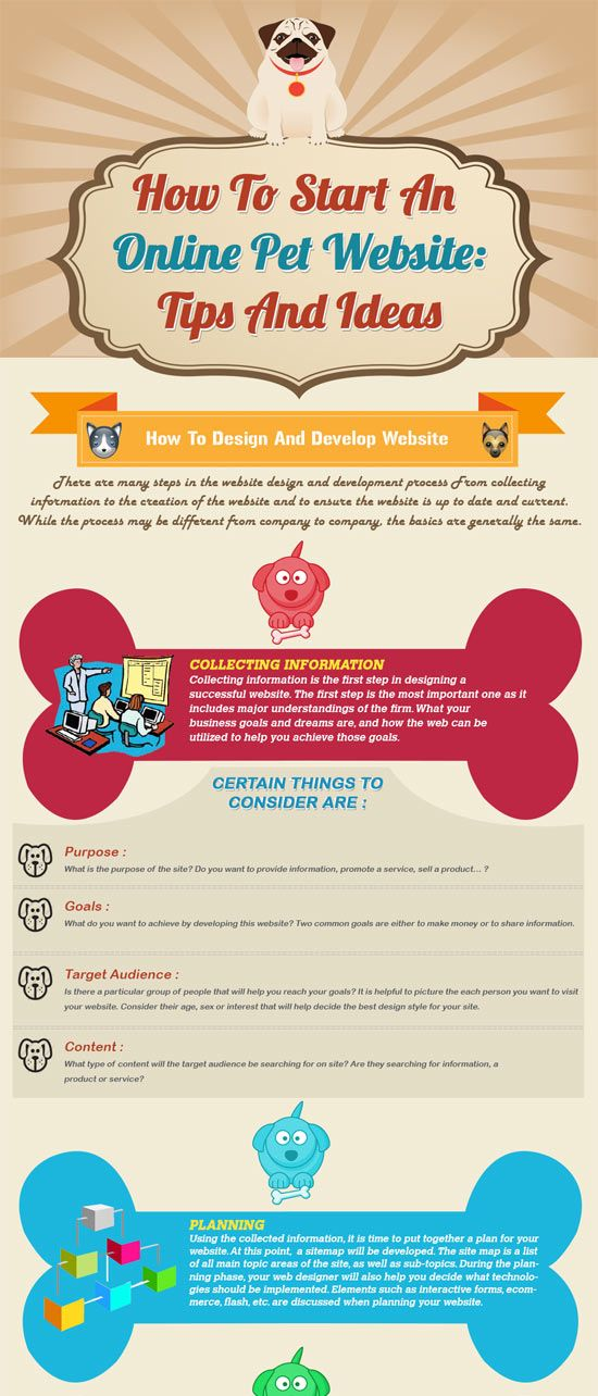 Infographic: How To Start An Online Pet Website