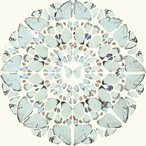 Damien Hirst butterfly mandala