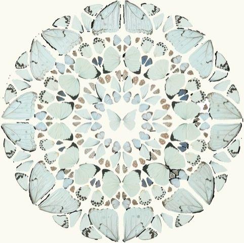 Damien Hirst butterfly mandala
