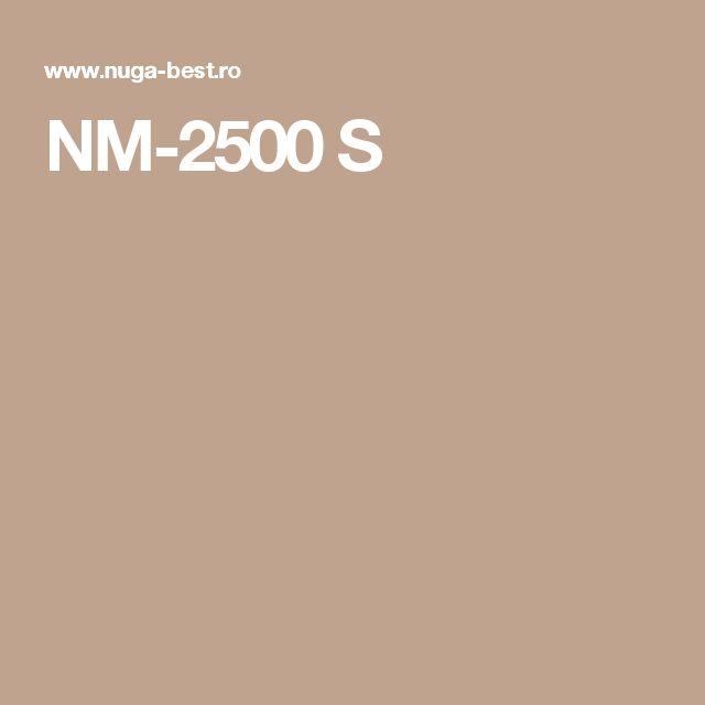 NM-2500 S