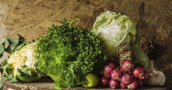 Qué plantar este otoño: 8 deliciosas verduras para comer. Si los últimos tomates verdes enrojecen en la enredadera y las hojas del calabacín comienzan a curvarse y a adoptar una tonalidad amarillenta en los bordes, no tienes que sentir nostalgia por tu huerto. Es el momento de tomar la pala y comenzar a plantar tus verduras de otoño. El jardín que plantes cuando el verano comienza a transformarse en ...
