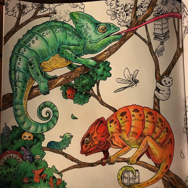 Just A Few Finishing Touches Left Animorphia Prismacolorpencils Prismacolor