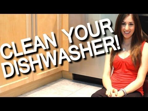 Your dishwasher is not self cleaning ~~ Clean Your Dishwasher Filter. | Clean My Space