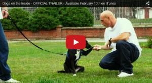 Why This Special Bond Between Human And Dog? - http://www.dogisto.com/documentary-film-shows-bond-between-human-and-dog/