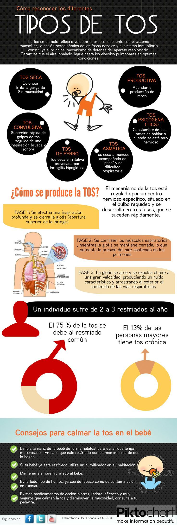 tipos de tos - Types of coughs - Medical infographic Unit