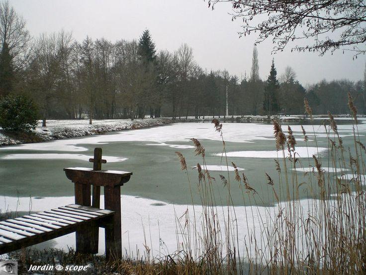 Souvenir de la Sologne lors d'un hiver sous la neige…