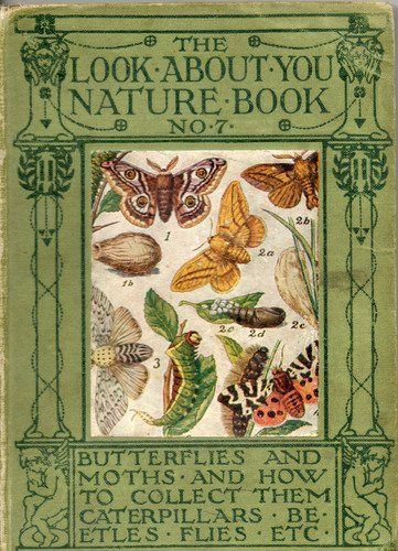 THE LOOK ABOUT YOU NATURE BOOK No 6 Hardcover – 1908 amazon.co.uk