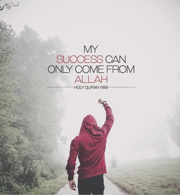 """...and my success (in my task) can only come from Allah. In Him I trust and unto Him I look."" - The Holy Qur'an Surah Hud:88"