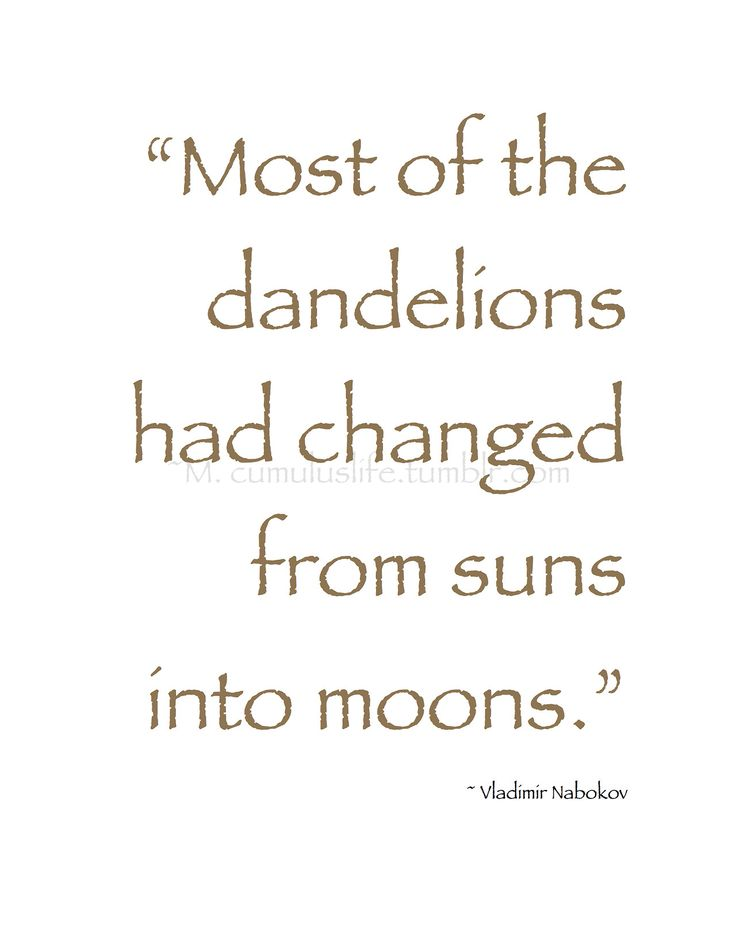 "-: Summer Shine :- ""Most of the dandelions had changed from suns into moons."" ~ Vladimir Nabokov #summer_quote"
