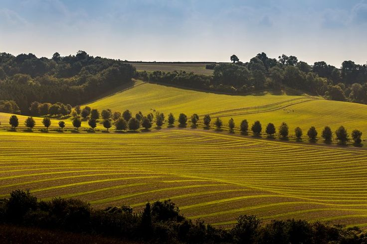 Chris Nesbit's photograph of fields near Winchester has been chosen for the cover of a new OS Map for Winchester, New Alresford and East Meon.
