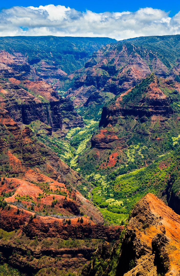 Amazing Waimea Canyon in Kauai, Hawaii Islands.