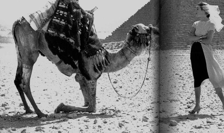 https://flic.kr/p/21Nwr5k   Dovima wearing Claire McCardell, Egypt 1951