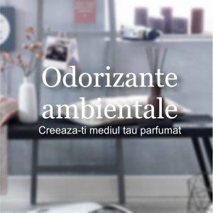 Odorizante ambientale Creeaza-ti spatiul parfumat De pe blogul nostru: https://www.brandoffice.ro/blog.html