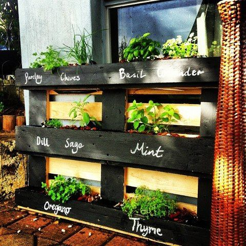 Jardin vertical en palette pour les herbes + peinture à tableau pour noter les semis ou dessiner - vertical gardening - pallet painted w/challkboard paint for easy labeling