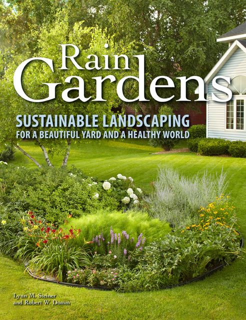 Best 25 rain garden ideas on pinterest pond rocks rock for Garden pond design books