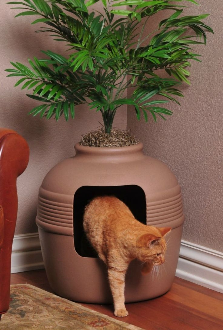 The planter allows you to place the litter-box in any area of your home, whether it's tucking it in a low-traffic corner or keeping it in easy view. It prevents you and your guests from having to deal with the sight of a used litter-box and it allows your cat some privacy to do its business.