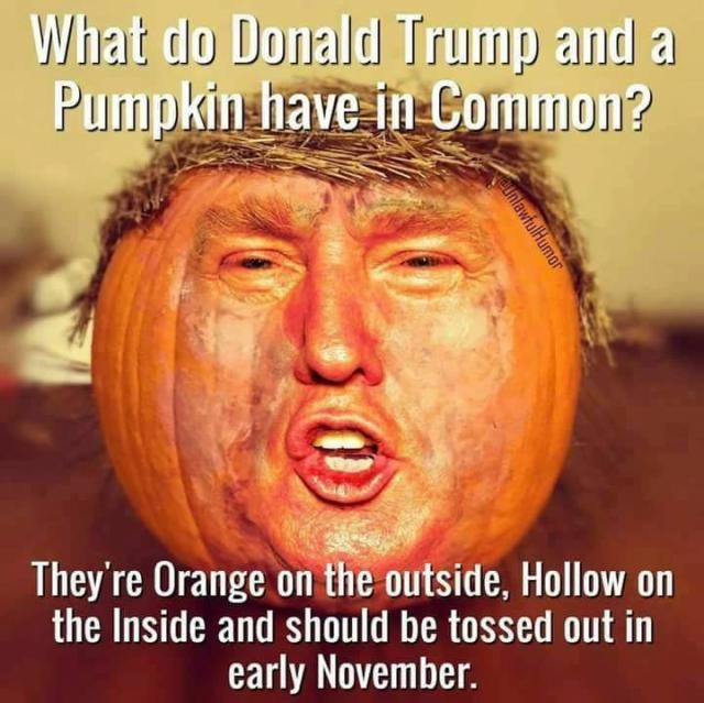 Frightfully Funny Halloween Memes and Cartoons: Trump and a Pumpkin