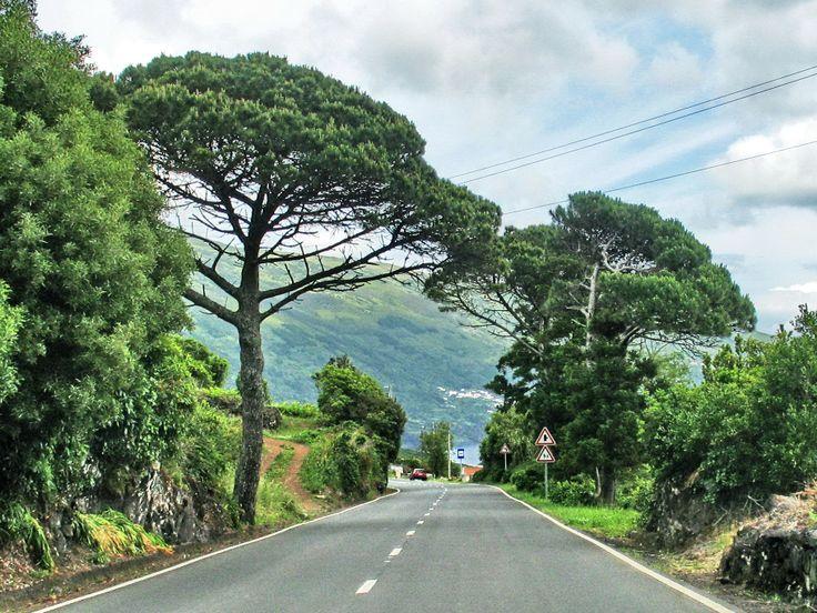 Pico, Açores