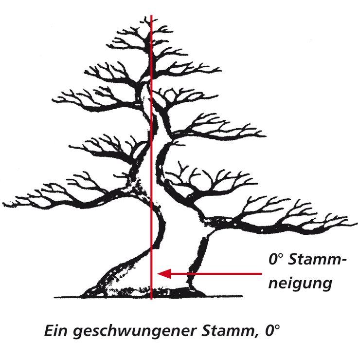 Geschwungener Stamm, 0° Neigung