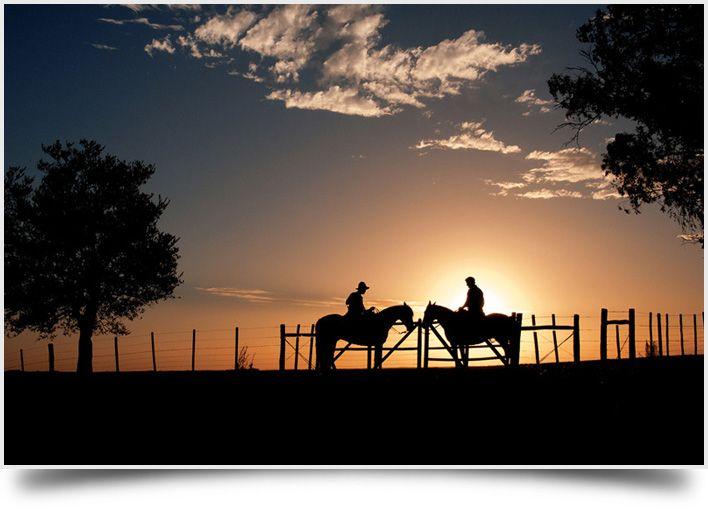 Andar a cavalo durante o por do sol é incrível!