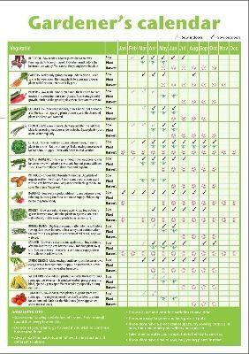 A3 Laminated Garden Planner Wall Chart