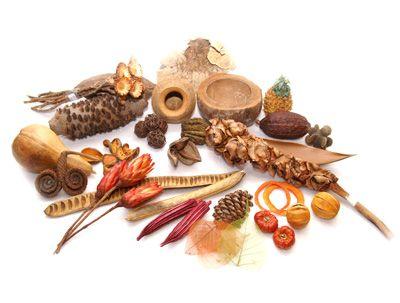 Voedsel van de jagers en verzamelaars http://maaikezijm.com/2013/11/13/de-eerste-boeren/