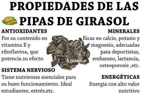 PROPIEDADES DE LAS PIPAS DE GIRASOL