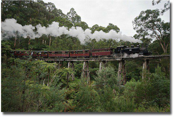 Puffing Billy compliments of http://www.flickr.com/photos/yewenyi/2516086061/
