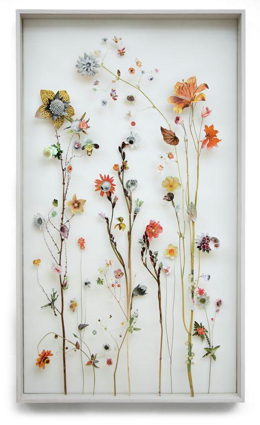 Rosen Trocknen, Natur Handwerk und Blumen Pressen