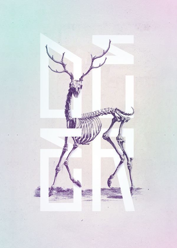 Bone - Anatomy Illustrated by Josip Kelava, via Behance