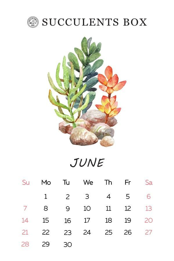 Printable 2020 Calendar In 2020 Calendar Wallpaper Print Calendar Calendar