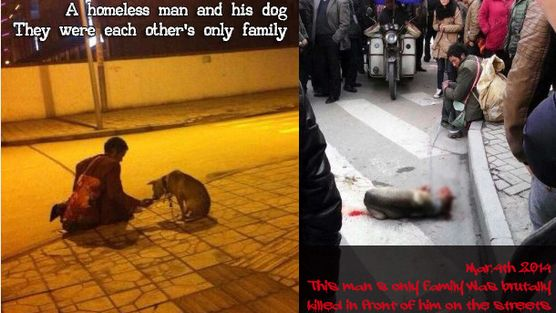 Sign Petition!!! Demand justice over police killing the dog of a homeless man in Langzhong. Demand animal cruelty laws in China and stop people from committi...
