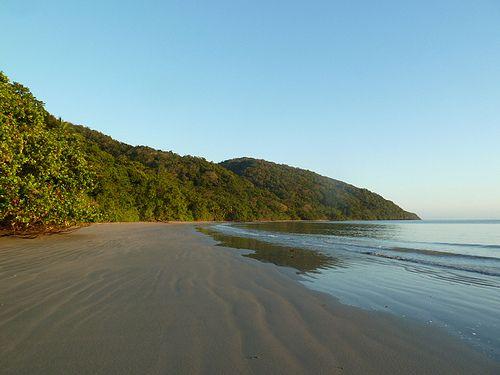Cape Tribulation & Daintree (brief article)