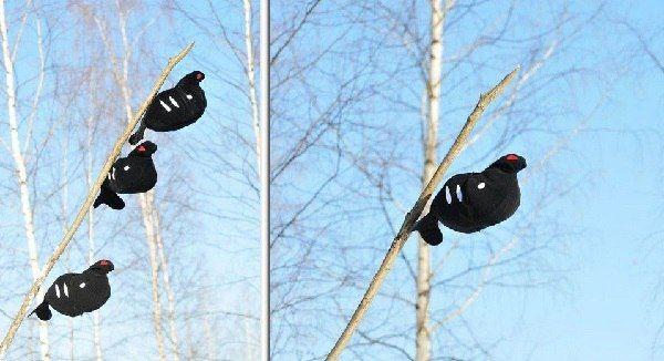 ОХОТА НА ТЕТЕРЕВА С ЧУЧЕЛАМИ ОСЕНЬЮ  Охота на тетеревов с чучелами начинается в октябре, после образования зимних стай, когда птицы уже питаются березовыми почками и сережками. Увидев своих товарищей на дереве, птицы охотно присоединяются к ним.  Лучшее место для охоты с чучелами — опушки березняков или отдельно стоящие березовые куртины среди полей и лугов. Эти места надо определить заранее и поставить около них шалаш. До рассвета чучела устанавливают на длинных шестах, на деревьях, при…
