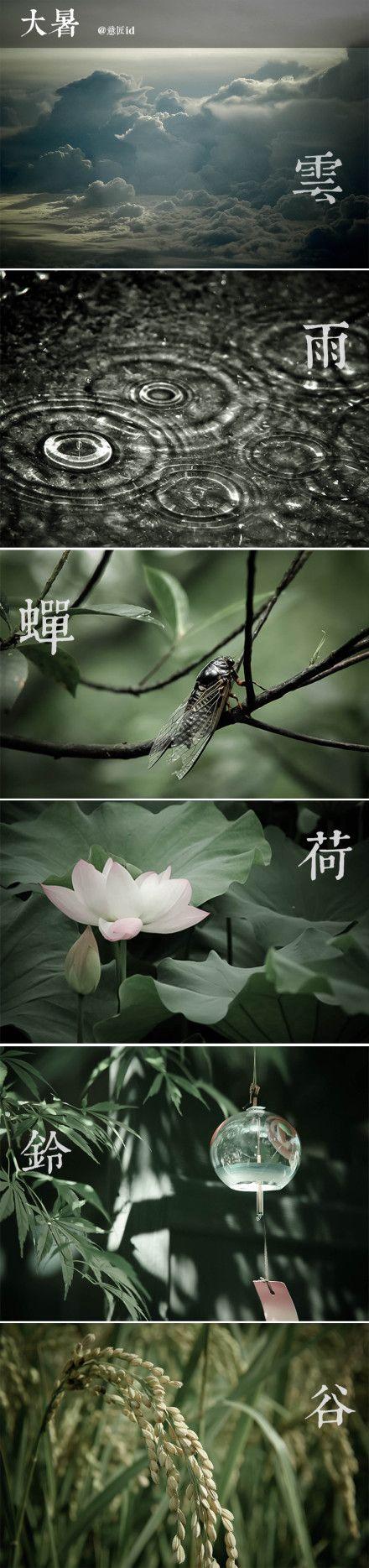 Chinese season - Da Shu (hot summer) 大暑
