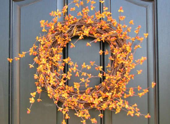 Bittersweet branches for a fall wreath