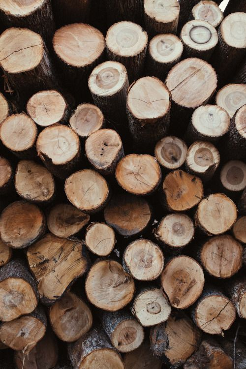 "heyimchandler: "" Theres something so soothing about the smell of freshly chopped wood. """