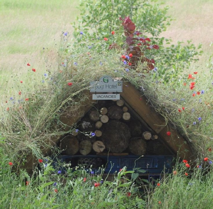 We aim to increase biodiversity across our 276 acres and our entire team of staff are involved in numerous 'eco projects' such as the construction of our Bug Hotel.