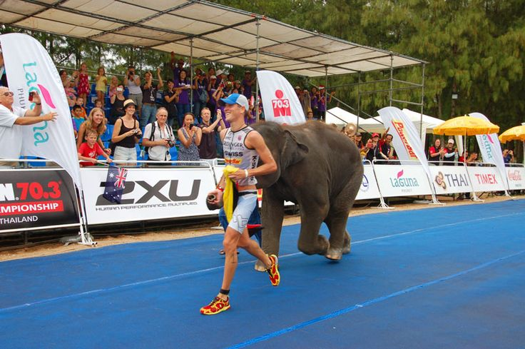 Race winner, guided by elephant - Ironman 70.3 Phuket, Thailand