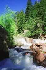 Natural Spring Water delivered #EldoradoSprings #Water