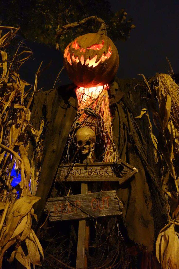 halloween scarecrow haunt nation - Halloween Scare Crow