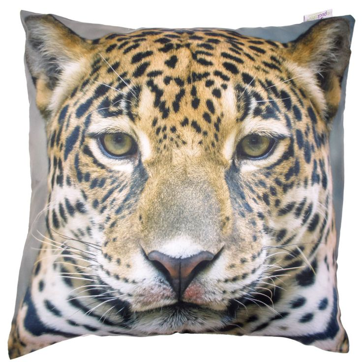 8 best images about cute xl cushions on pinterest cats hot pink and turquoise. Black Bedroom Furniture Sets. Home Design Ideas
