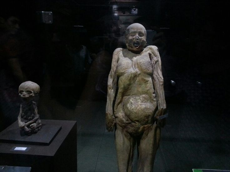 Museo de las Momias (Museum of Mummies) in Guanajuato, Guanajuato.