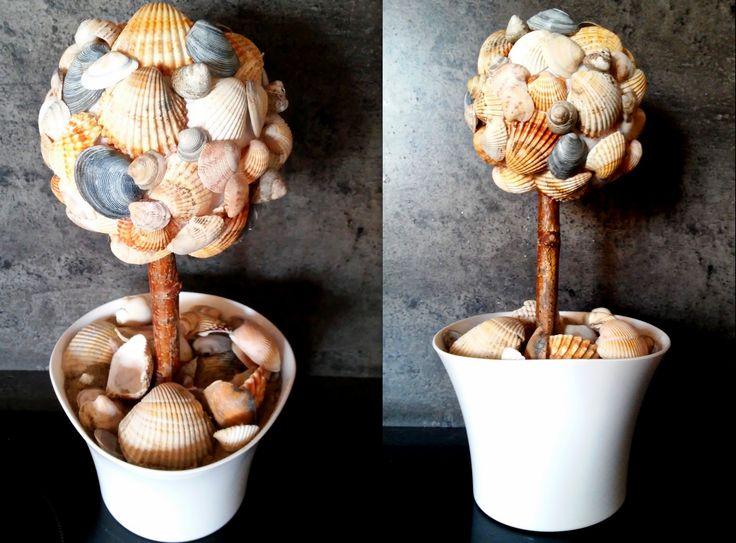 mušle - strom z mušlí Mussels